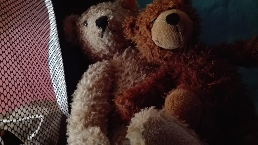 Teddy-freunde