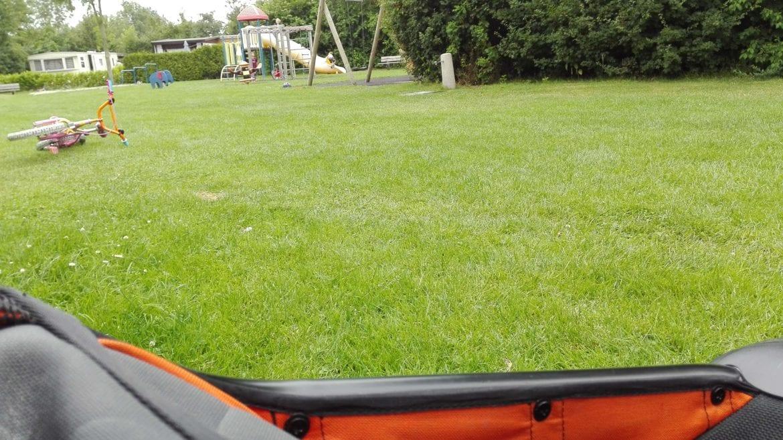 Teddy-im-Kinderwagen