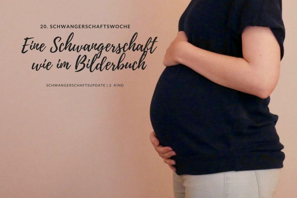 20. Schwangerschaftswoche Schwangerschaftsupdate | familiert.de